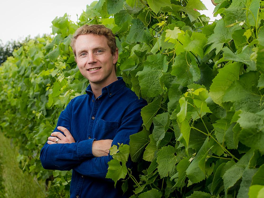 Daniel Ham - Langham Wines