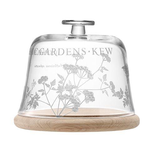 LSA Royal Botanical Gardens Kew Glass Dome & Oak Base - Cow Parsley