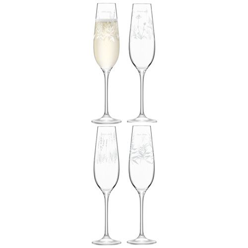 LSA Royal Botanical Gardens Kew Champagne Flute 235ml Assorted Set of 4