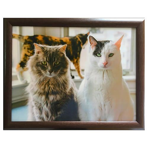 Country Matters Trio Of Cats Lap Tray