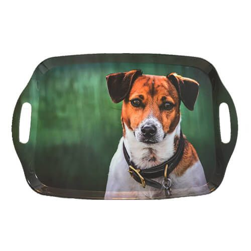 Country Matters Jack Russell Tray