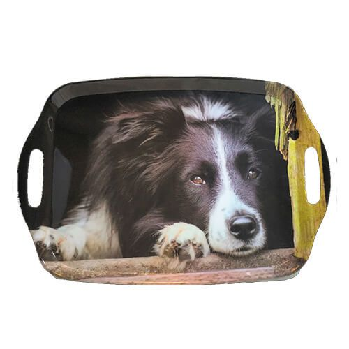 Country Matters Chilled Out Collie Tray