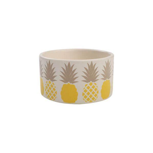 T & G Tutti Frutti Pineapple Dip Dish