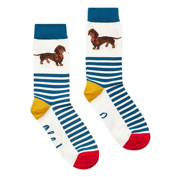 Joules Navy Dachshund Brilliant Bamboo Single Socks