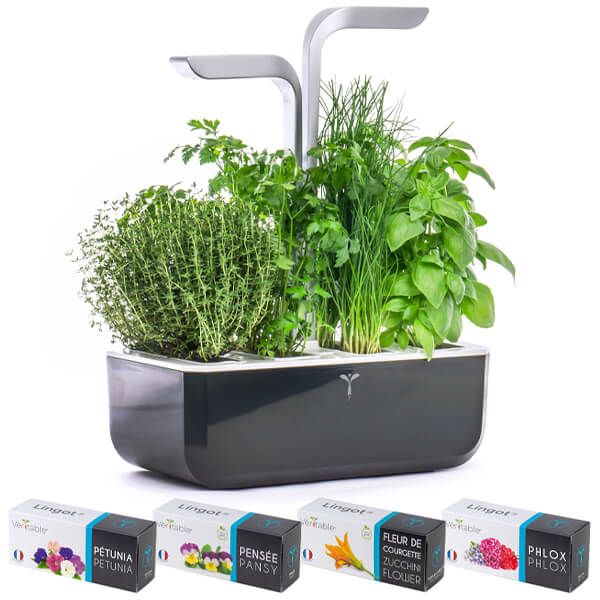 Veritable Soft Black Smart 4-Slot Indoor Garden with FREE Gifts