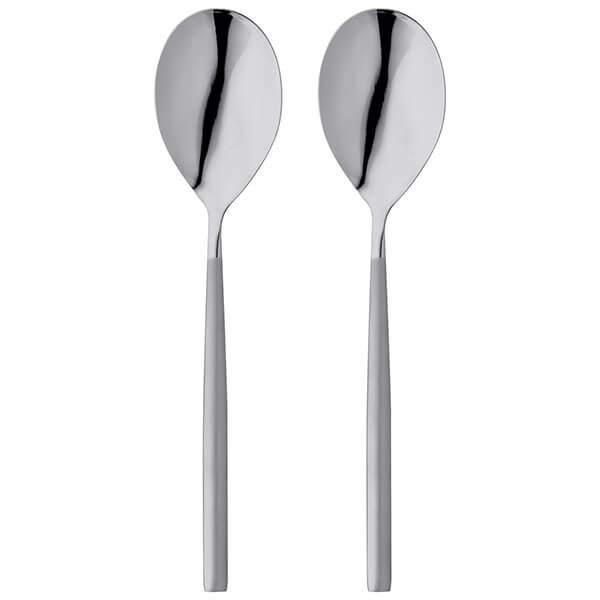 Stellar Rochester Matt Set Of 2 Serving Spoons Gift Box Set