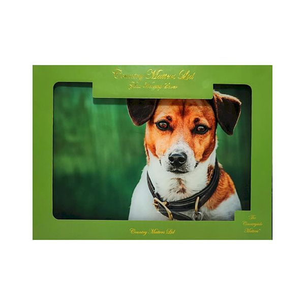 Country Matters Jack Russell Glass Work Top Saver