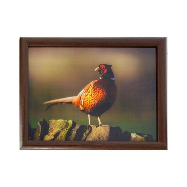 Country Matters Pheasant on Wall Lap Tray