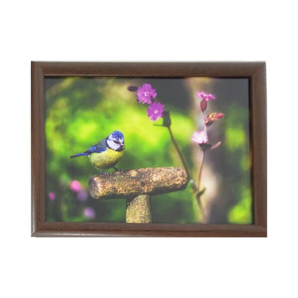Country Matters Garden Blue Tit Lap Tray