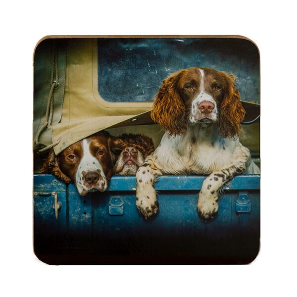 Country Matters Spaniels in Landy Coaster
