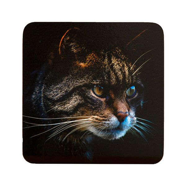 Country Matters Stalking Cat Coaster