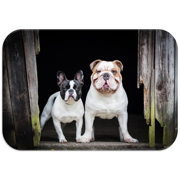 Country Matters French and English Bulldog Placemat