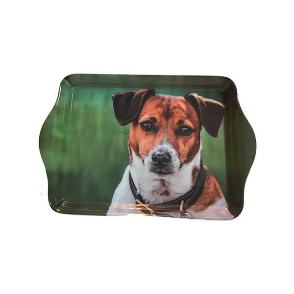 Country Matters Jack Russell Trinket Tray