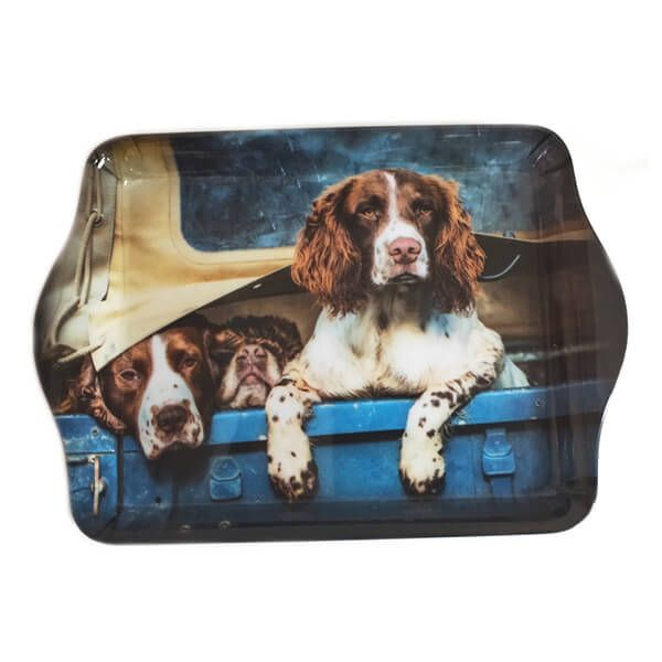 Country Matters Spaniels in Landy Trinket Tray