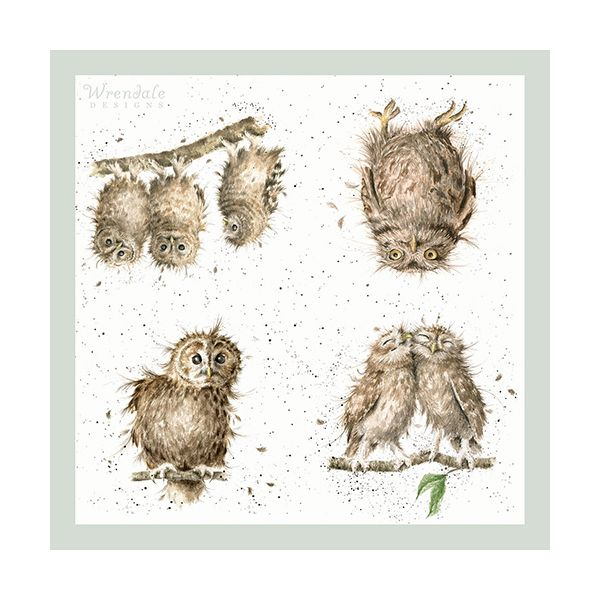 Wrendale Designs What A Hoot Pack Of 20 Napkins