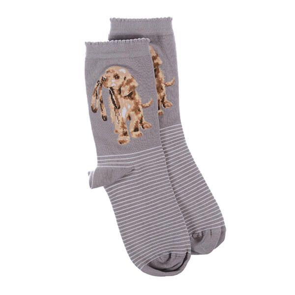 Wrendale Designs Hopeful Dog Socks