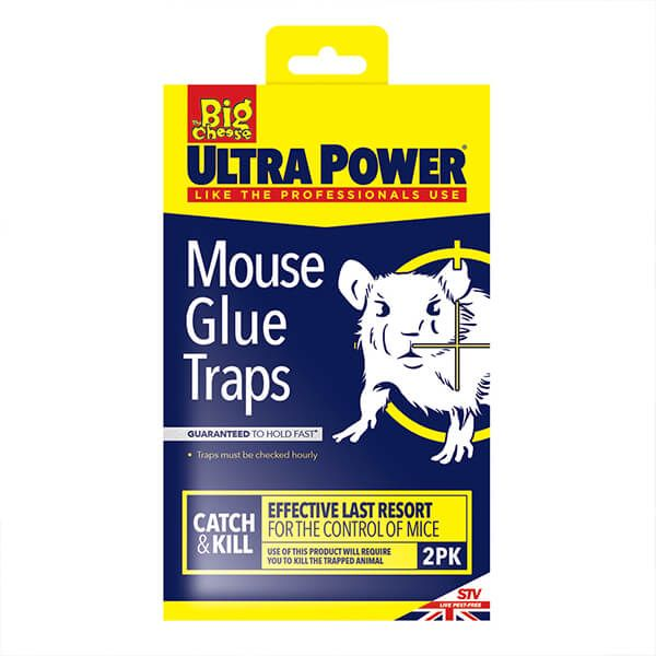 The Big Cheese RTU Mouse Glue Trap Pack Of 2