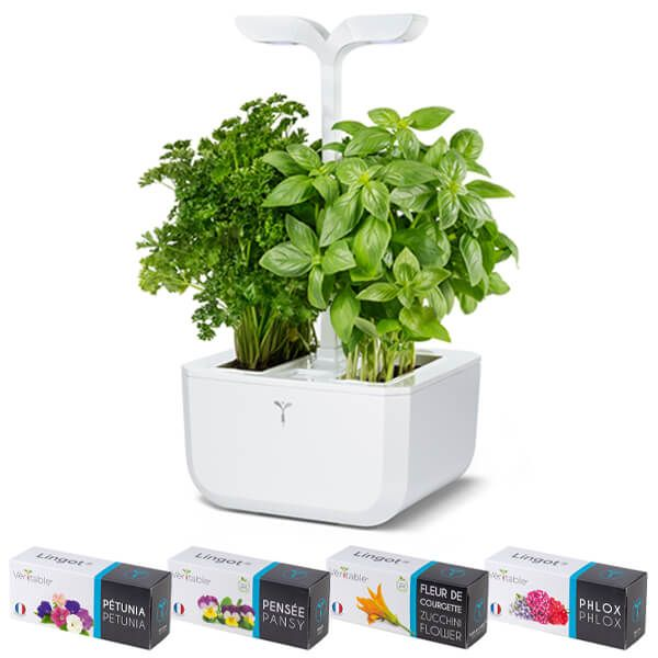 Veritable Arctic White Classic Exky 2-Slot Indoor Garden with FREE Gifts