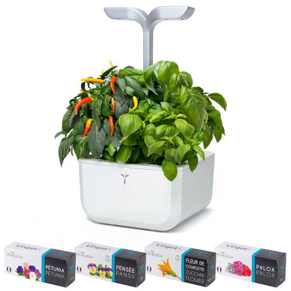 Veritable Arctic White Smart Exky 2-Slot Indoor Garden with FREE Gifts