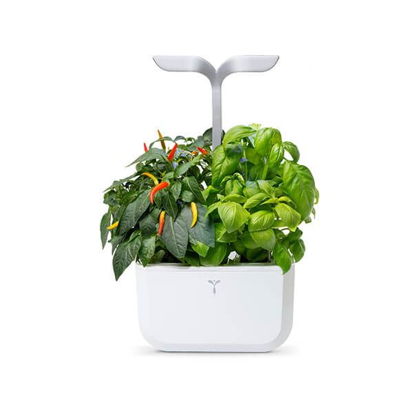 Veritable Arctic White Smart Exky 2-Slot Indoor Garden
