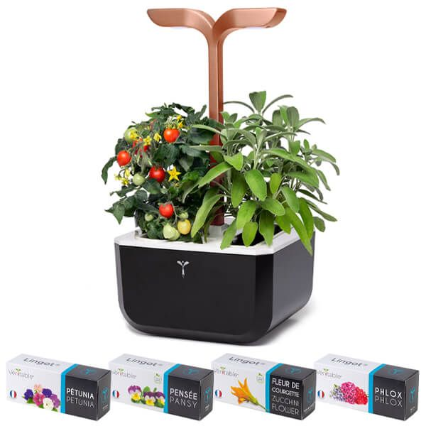 Veritable Black Copper Smart Exky 2-Slot Indoor Garden with FREE Gifts