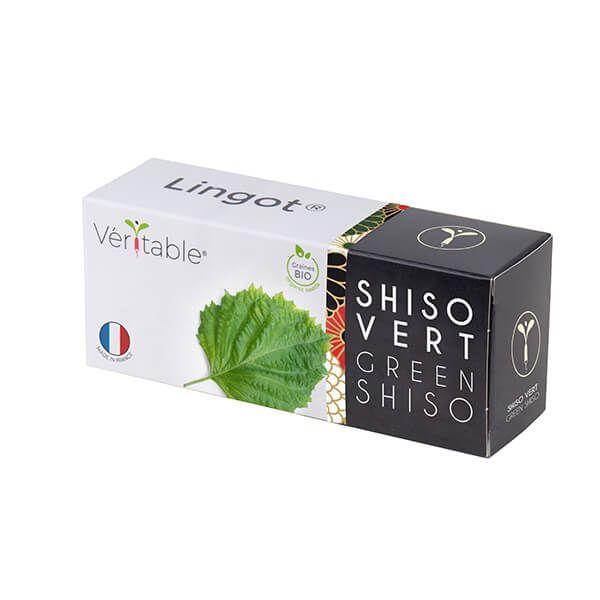 Veritable Organic Green Shiso Lingot
