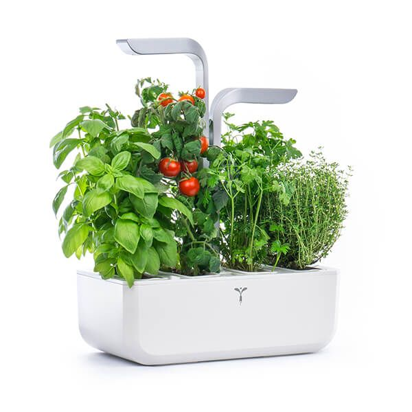 Veritable Arctic White Smart 4-Slot Indoor Garden