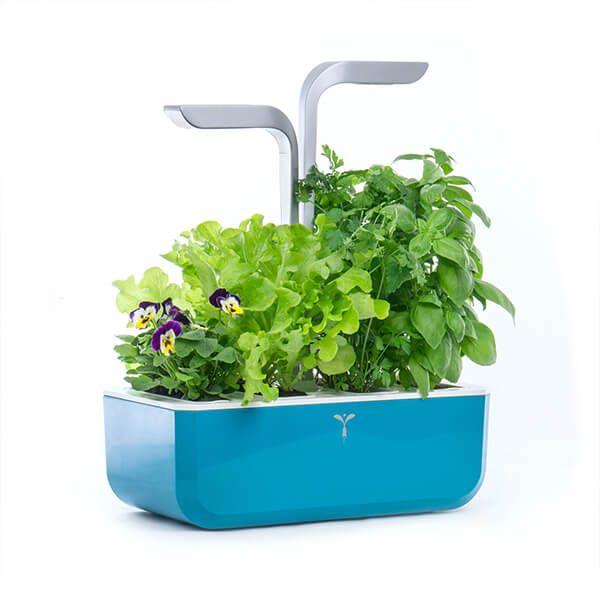 Veritable Teal Blue Smart 4-Slot Indoor Garden