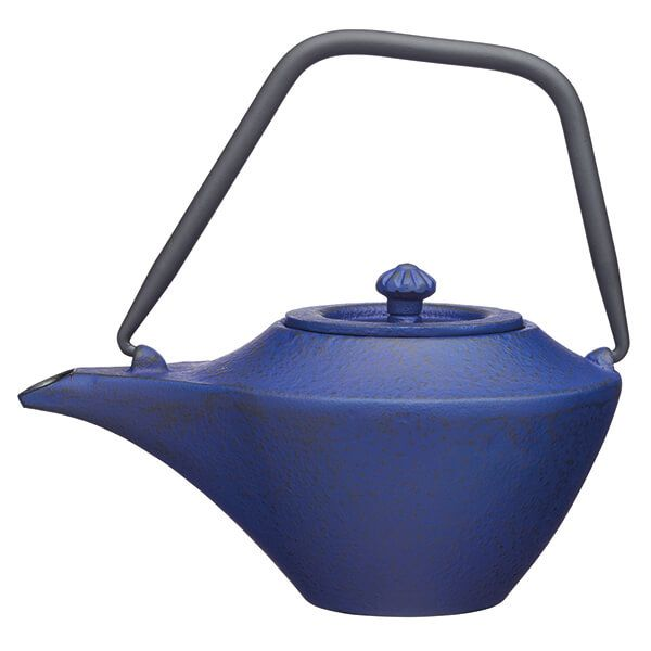 World of Flavours Cast Iron Infuser 450ml Teapot