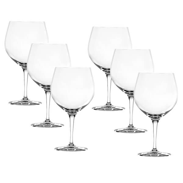 Spiegelau Gin & Tonic 6 Piece Set