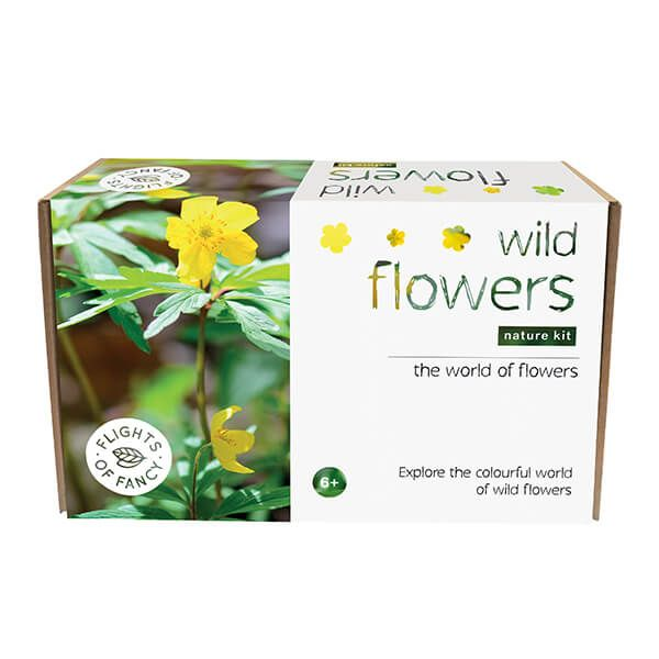 Flights Of Fancy Nature Kit - Wild Flowers