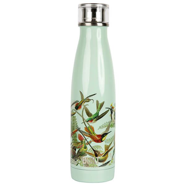 Built V&A 500ml Double Walled Stainless Steel Water Bottle Hummingbird
