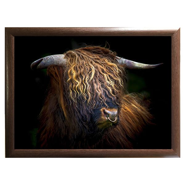 Country Matters Highland Bull Lap Tray