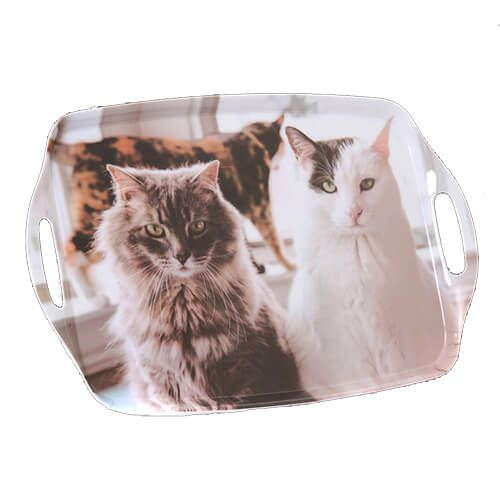 Country Matters Trio Of Cats Tray