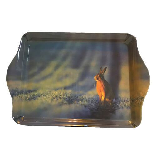 Country Matters Wild Hare Trinket Tray