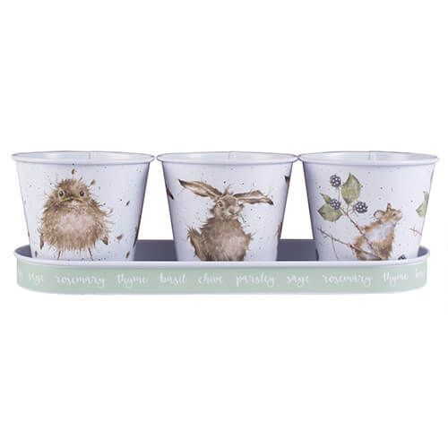 Wrendale Set of 3 Herb Pots With Tray