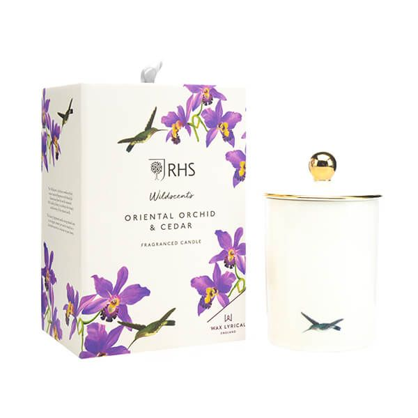 Wax Lyrical RHS Wildscents Oriental Orchid & Cedar Ceramic Candle
