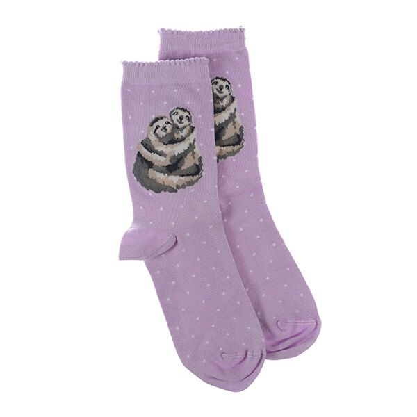 Wrendale Designs Little Card Big Hug Sloth Socks