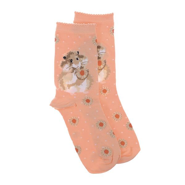 Wrendale Designs Diet Starts Tomorrow Hamster Socks