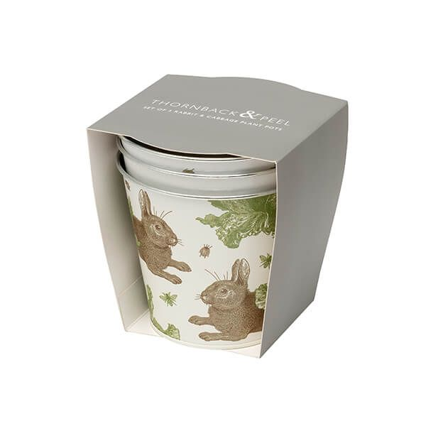 Thornback & Peel Rabbit & Cabbage Set of 3 Flower Pots