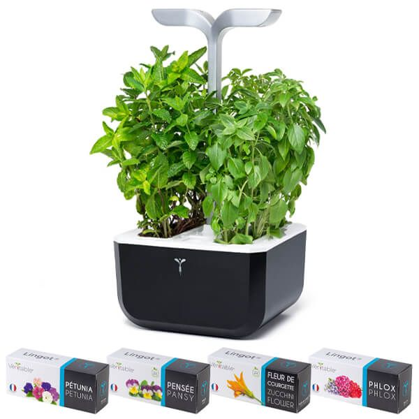 Veritable Soft Black Smart Exky 2-Slot Indoor Garden with FREE Gifts