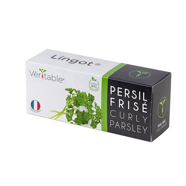Veritable Organic Curly Parsley Lingot