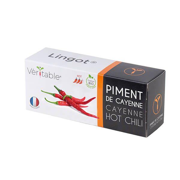 Veritable Cayenne Hot Chilli Pepper Lingot