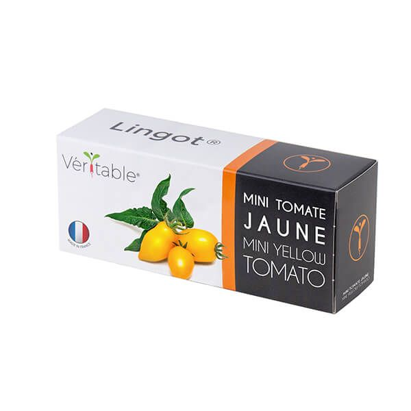 Veritable Yellow Cherry Tomato Lingot