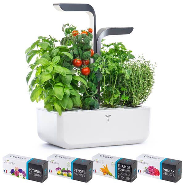 Veritable Infinity Grey Connect 4-Slot Indoor Garden with FREE Gifts