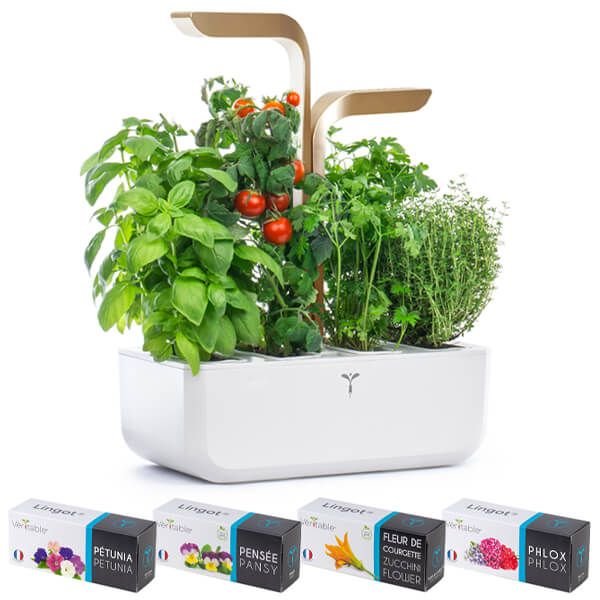 Veritable Moonlight Gold Connect 4-Slot Indoor Garden with FREE Gifts