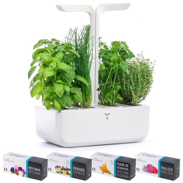 Veritable Arctic White Classic 4-Slot Indoor Garden with FREE Gifts