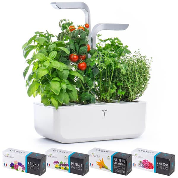 Veritable Arctic White Smart 4-Slot Indoor Garden with FREE Gifts