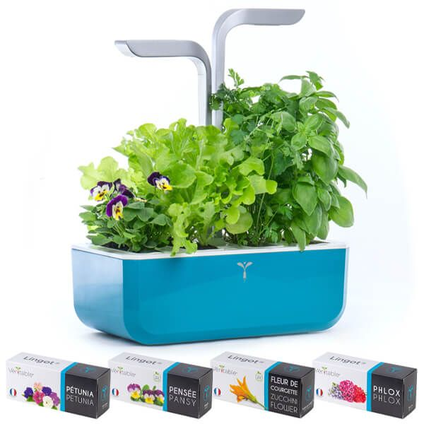 Veritable Teal Blue Smart 4-Slot Indoor Garden with FREE Gifts