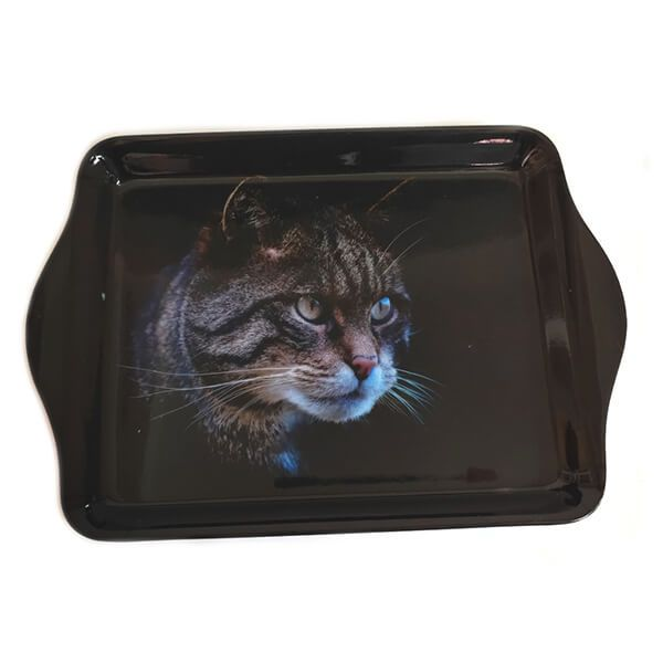 Country Matters Stalking Cat Trinket Tray
